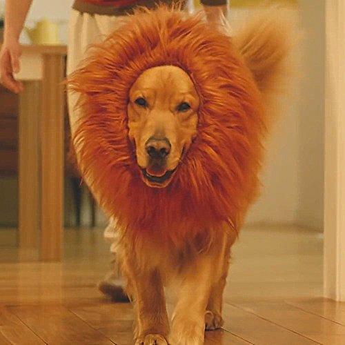 ライオン たてがみ 犬用コスチューム (犬用 ライオンコスプレネックウォーマー ブラウンM)