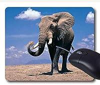 マウスパッド象の上の人格のdesingsゲームのマウスパッド