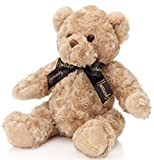 Harrods (ハロッズ) テディーベアー ジェイコブベア Jacob Bear (Large) teddy bear [並行輸入品]