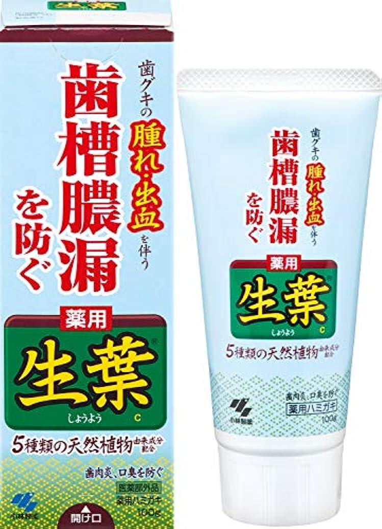 逸脱香り立場生葉(しょうよう) 歯槽膿漏を防ぐ 薬用ハミガキ ハーブミント味 100g 【医薬部外品】