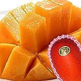 太陽のタマゴ 秀品(贈答向け) 2~3玉 約1kg 化粧箱入 糖度15度以上 1玉350g以上 マンゴー