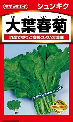 タキイ種苗 しゅんぎく 大葉春菊
