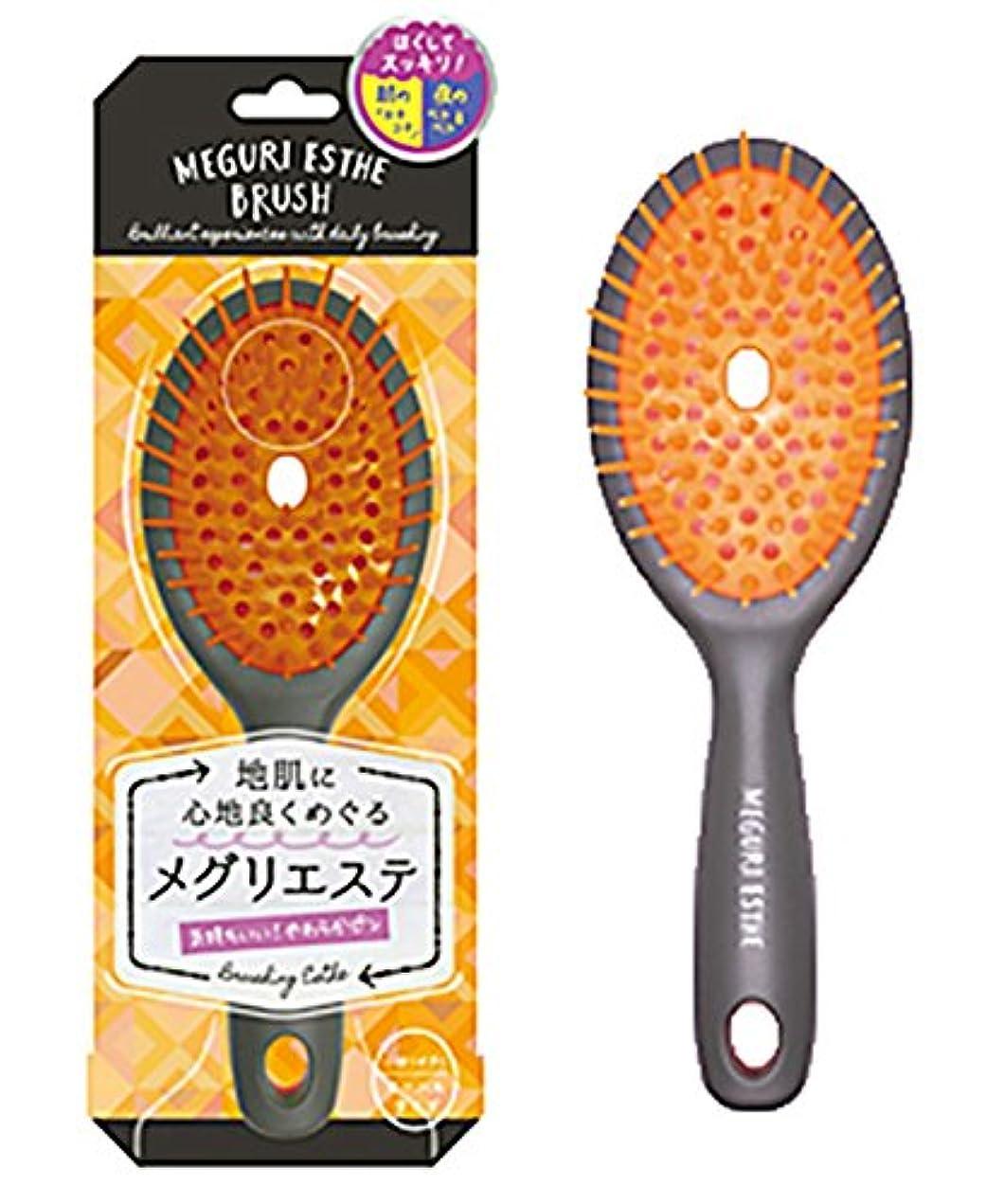 モニター範囲保持するラッキーウィンク メグリエステブラシ オーバル(オレンジ) MEB800