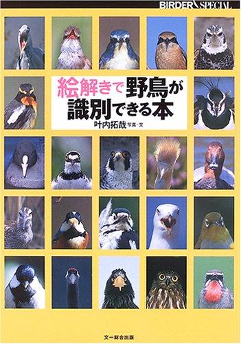 絵解きで野鳥が識別できる本 (BIRDER SPECIAL)