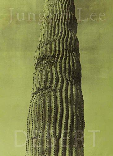 Jungjin Lee: Desert