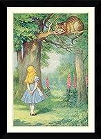 アートフレーム印刷'アリスとチシャ猫不思議の国のアリス'から、Illustration by Lewis Carroll ' byジョン・テニエル Size: 27 x 37 (Approx), Matted グリーン 3832638