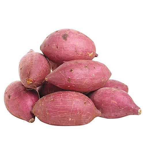 """丸和商店 <訳あり・規格外品> 千葉県産 シルクスイート 5kg / -Imperfect Produce- Sweet Potato, """"Silk Sweet"""", 5kg"""
