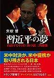 「習近平の夢――台頭する中国と米中露三角関係」販売ページヘ