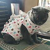 Alien Pet ペット服猫 術後服 術後着 猫用術後服 猫の術後服 術後ウェア 避妊 腹部保護 傷口の保護 皮膚保護 ヘルスケア エリザベスカラー 2色4サイズ ハート/XS