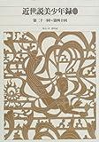 近世説美少年録 2 第二一回~第四十回  新編日本古典文学全集 (84)