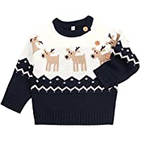 TAIYCYXGAN Baby Boys Girls Ugly Christmas Sweater Toddlers Deer Pullover Sweatshirt