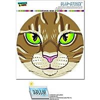 褐色 Tabby ネコ面 - ペットキティサークルSLAP-STICKZ(TM)プレミアムステッカー