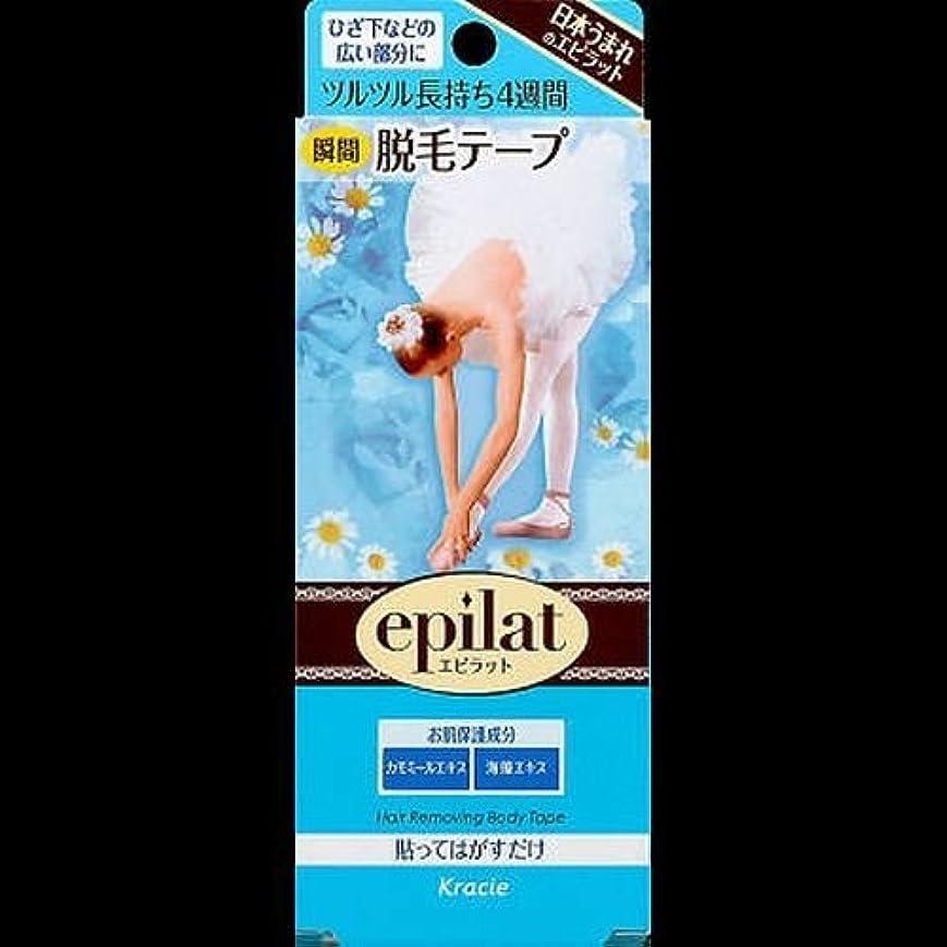 世代保証する風邪をひく【まとめ買い】エピラット脱毛テープ 14枚 ×2セット
