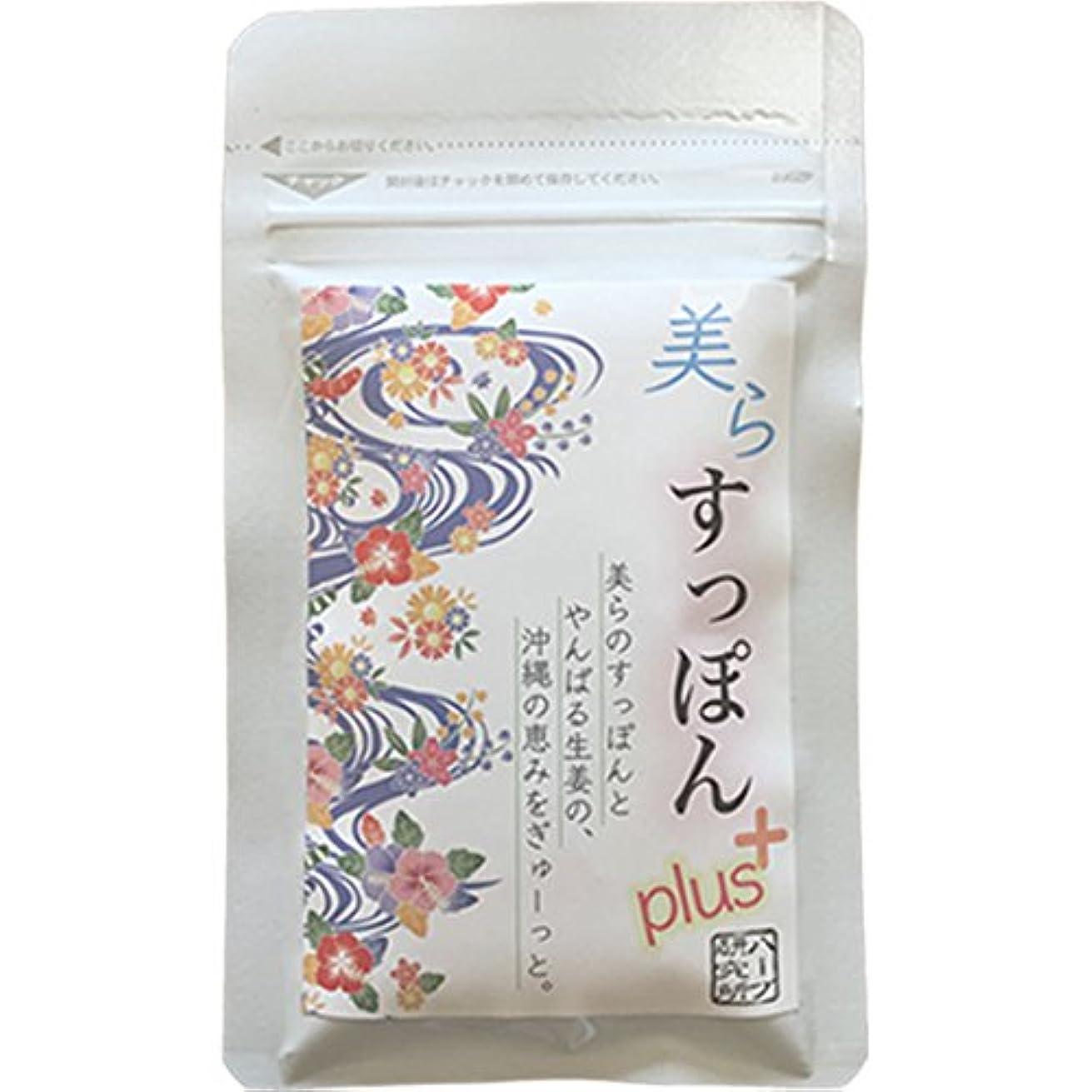 温活 ぷるぷる 沖縄すっぽん + やんばるしょうが のサプリ 62粒 1パック