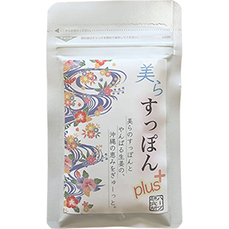 意味のあるフレッシュカリング温活 ぷるぷる 沖縄すっぽん + やんばるしょうが のサプリ 62粒 1パック