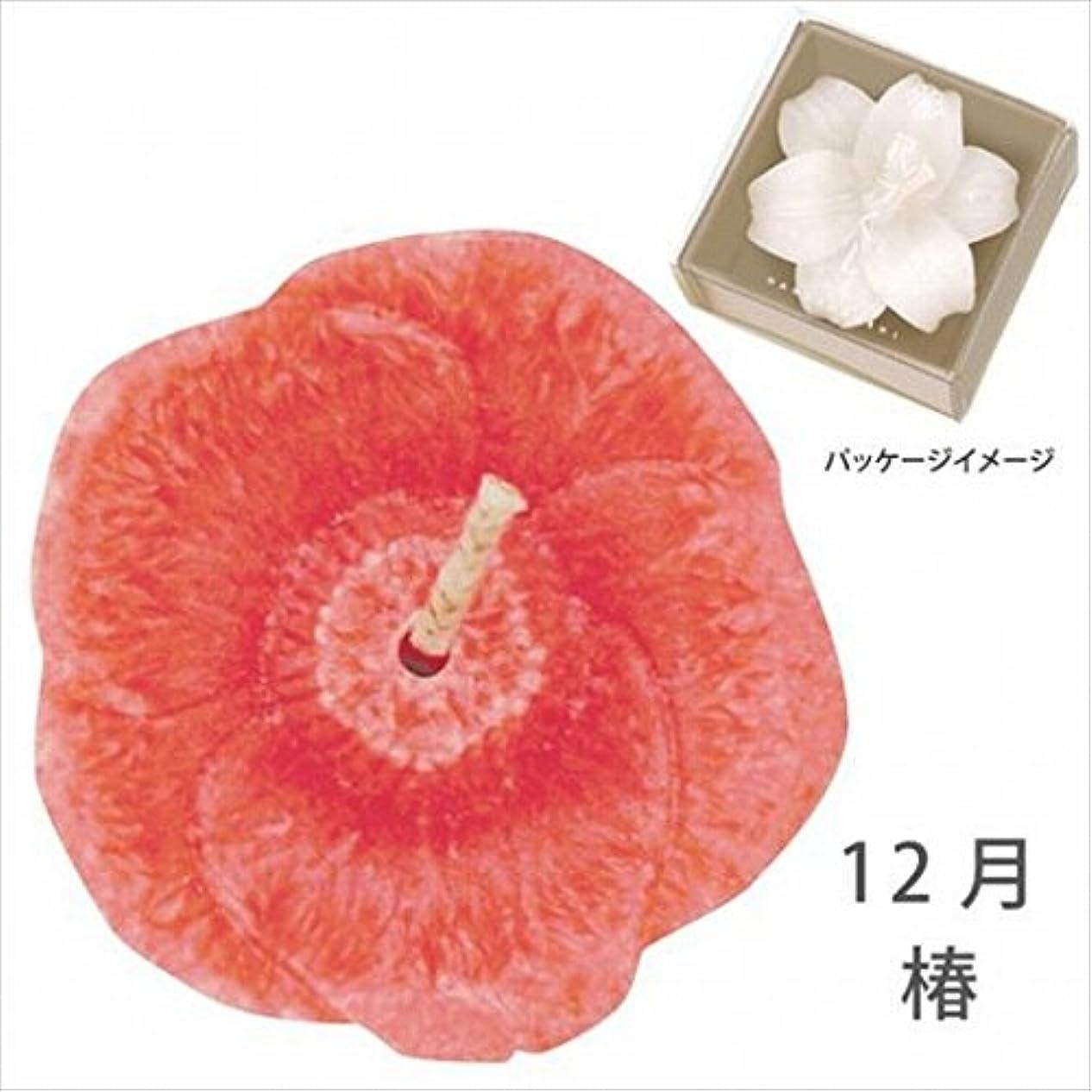 記念日チロムスタチオカメヤマキャンドル( kameyama candle ) 花づくし(植物性) 椿 「 椿(12月) 」 キャンドル