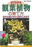見てわかる観葉植物の育て方 苗木の選び方から殖やし方まで (見てわかる園芸シリーズ)