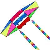 Besra Huge 98インチシングルライン3dレーダーKite with Flyingツール2.5 M電源ボックス凧with 2 Tailsアウトドア楽しいスポーツfor Adults