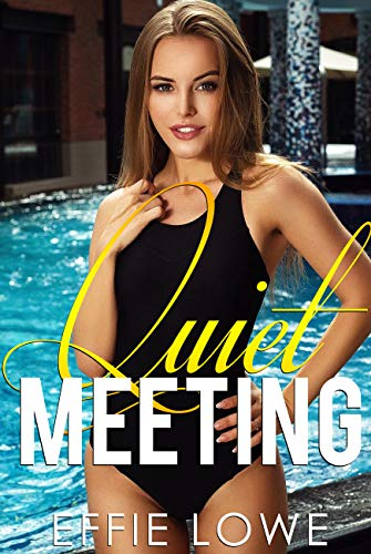 Quiet Meeting: Explicit Sex Stories Collection for Adults (English Edition)