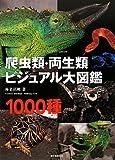 爬虫類・両生類ビジュアル大図鑑 画像