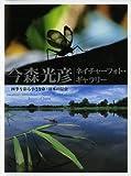 四季を彩る小さな命・日本の昆虫 (今森光彦ネイチャーフォト・ギャラリー)
