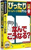 ぴったりホームページ印刷 Pro (説明扉付きスリムパッケージ版)