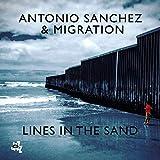 アントニオ・サンチェス / ラインズ・イン・ザ・サンド (Antonio Sanchez / Lines In The Sand) [CD] [Import] [日本語帯・解説付]