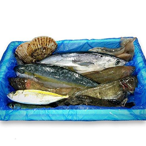 気仙沼 漁師さんの鮮魚セット〔約3~5kg※漁獲種類により異なります〕
