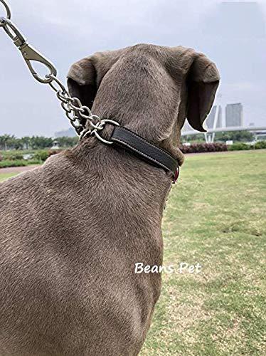Beans Pet 犬 首輪 ハーフチョーク 本革 中型犬 大型犬 スタンダード 機能性 トレーニング 可愛い オシャレ 高品質 丈夫 6枚目のサムネイル