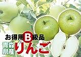 わけあり 青森県産 青りんご B級品 王林 20kg用木箱詰