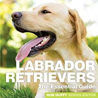Labrador Retrievers: The Essential Guide