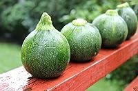 丸いズッキーニのスカッシュの家宝(オープン受粉)ブッシュ-100の種子。スカッシュサマー!