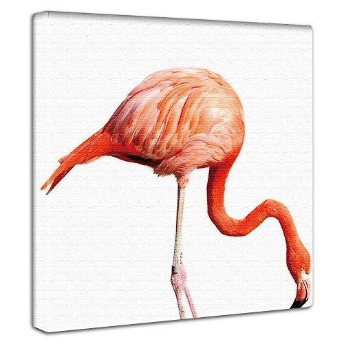 RoomClip商品情報 - アートデリ ポスター パネル フラミンゴ 30cm × 30cm 日本製 軽量 ファブリック pho-0037
