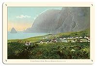 22cm x 30cmヴィンテージハワイアンティンサイン - Damien父 自宅 - モロカイ、ハワイ - Kalaupapa ハンセン病 決済 - ビンテージなハワイアンカラーのハガキ c.1910