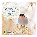 日本野鳥の会 2020 壁掛 しあわせことりカレンダー