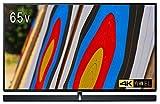 パナソニック VIERA TH-65EZ1000 65V型 4K対応 有機EL テレビ Ultra HD プレミアム対応 VIERA 3Wayシステムスピーカー搭載(Tuned by Technics)