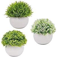 Surethingz フェイクグリーン 人工観葉植物 造花 観葉植物 かわいい おしゃれ 光触媒 CT触媒 ミニ キッチン 洗面所 玄関 窓