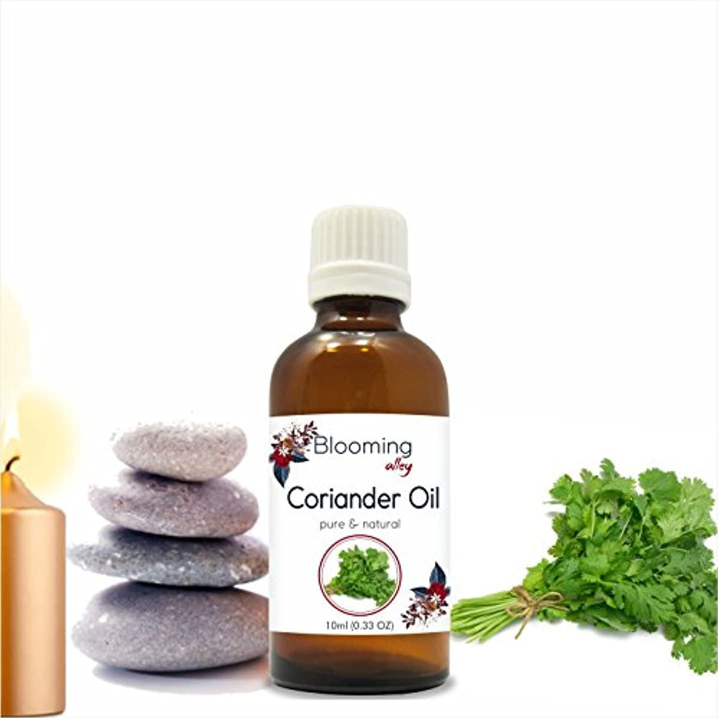 Coriander Oil (Coriandrum Sativum) Essential Oil 10 ml or 0.33 Fl Oz by Blooming Alley