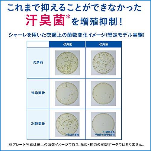 アタック ネオ 抗菌EX Wパワー 超特大 詰替 1.3kg