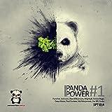 Panda Power #1
