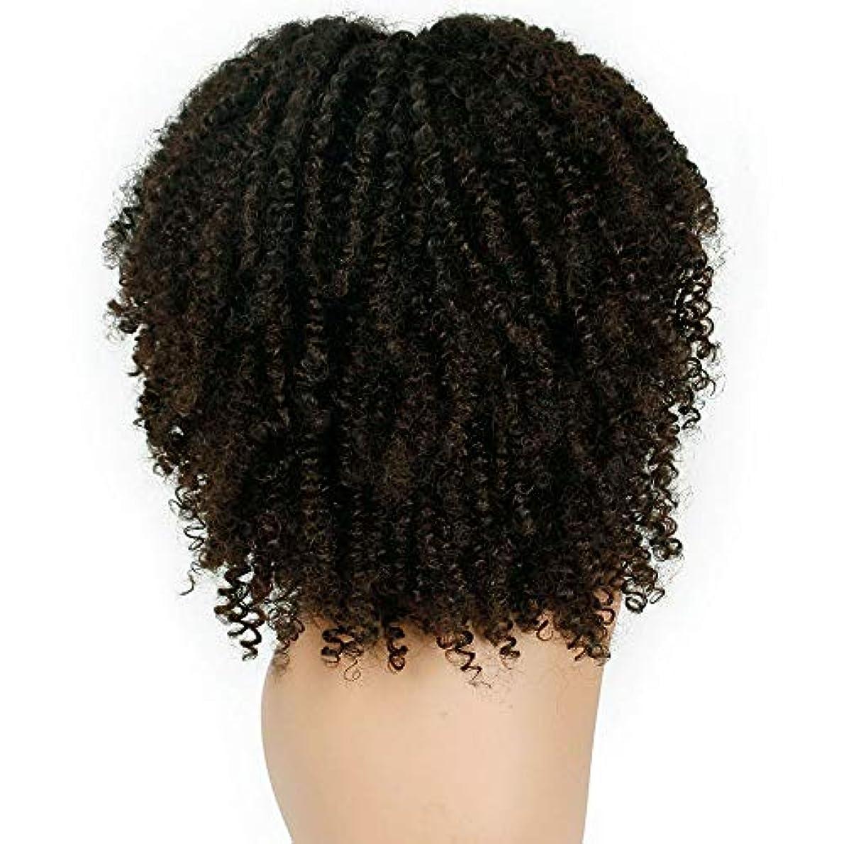 セントアーカイブスロット女性かつらふわふわ爆発ヘッド巻き毛化学繊維かつら38 cm