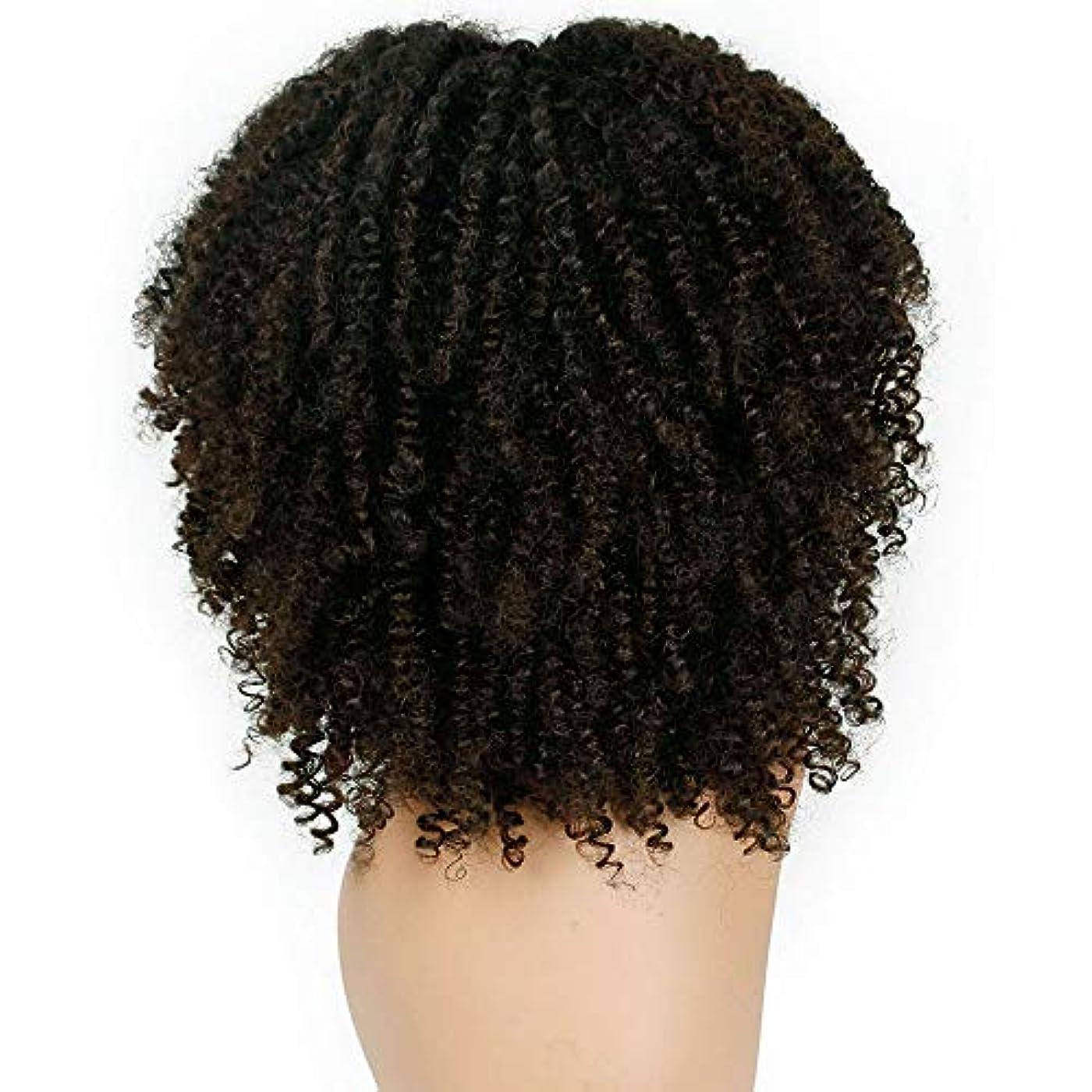 する必要があるストラップ強制女性かつらふわふわ爆発ヘッド巻き毛化学繊維かつら38 cm
