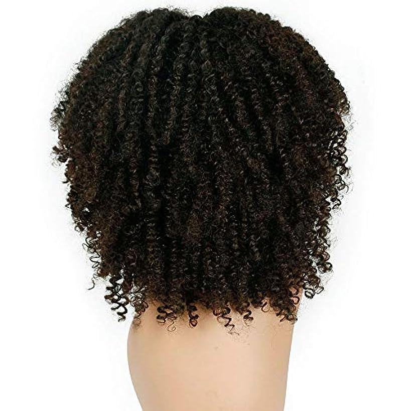 女性かつらふわふわ爆発ヘッド巻き毛化学繊維かつら38 cm