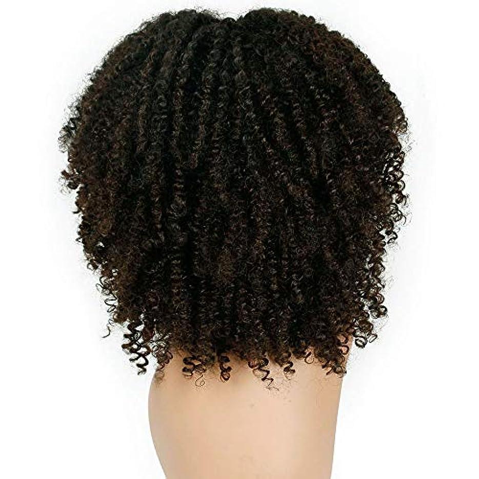 予感批判的養う女性かつらふわふわ爆発ヘッド巻き毛化学繊維かつら38 cm