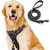 Rabbitgoo No-Pull Dog Harness Leash Set Heavy Duty Halter Harness with Leash for Large Dogs 3M Reflective Adjustable Pet Vest