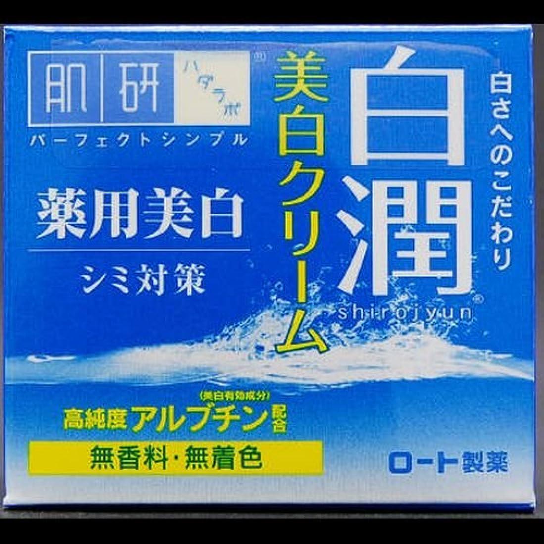 精査する見てパーツ【まとめ買い】肌研 白潤 薬用美白クリーム 50g ×2セット