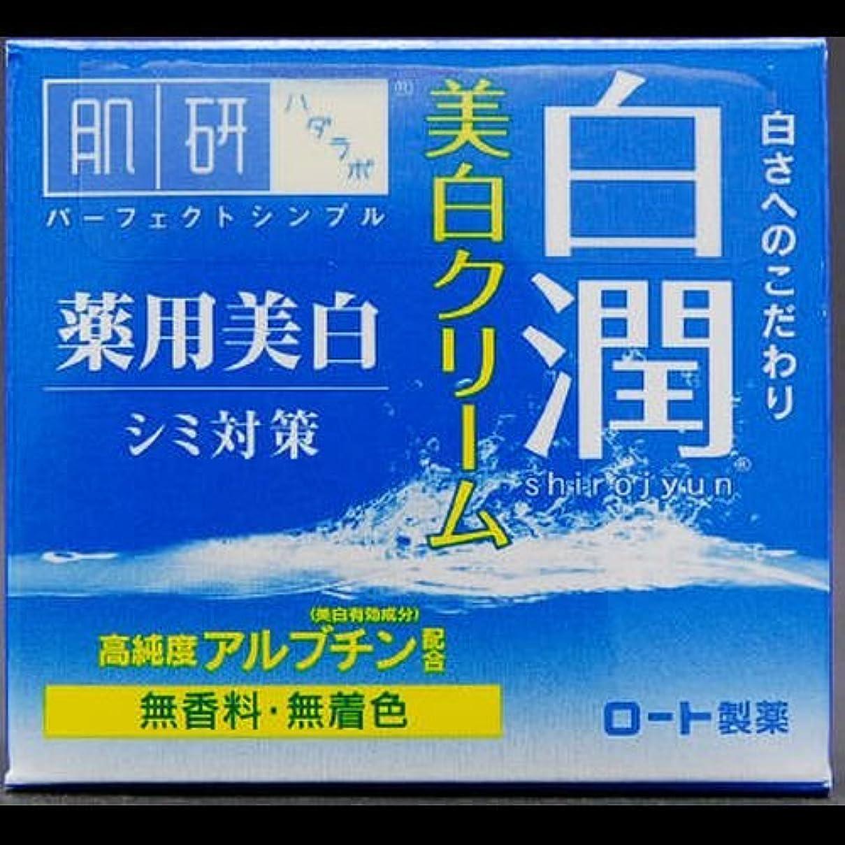 副道に迷いましたちっちゃい【まとめ買い】肌研 白潤 薬用美白クリーム 50g ×2セット
