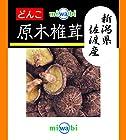 【爆下げ】miwabi 新潟県佐渡産 椎茸どんこ 30g×5個が激安特価!