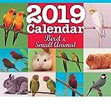 バード&スモールアニマルカレンダー 2019年