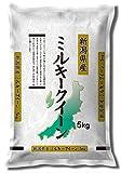 【精米】新潟県産 白米 ミルキークイーン 5kg 平成29年産